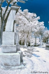 Allegheny Cemetery, Pittsburgh, Pa