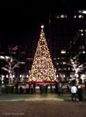 A Christmas Tree