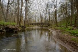 The stream makes it's way under a suspension bridge in Cedar Creek Park.